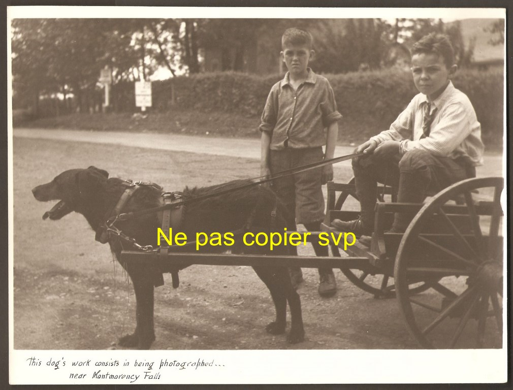 Deux garçons avec une voiturette à chien. Ils se trouvent dans la partie supérieure du site de la chute. La photographie est datée, au verso, du 16 juillet 1937.