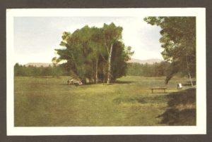 Une vue d'une allée du parcours du golf Kent (Kent Golf Links), vers 193. Ce club de golf se trouvait sur les terrains jouxtant l'hôtel Kent House. près de la chute Montmorency.