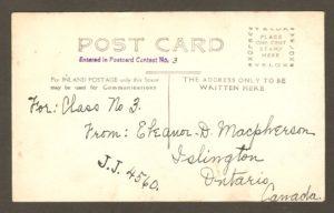 Endos de carte postale : ours polaire au zoo Holt Renfrew, sur le site de la chute Montmorency.