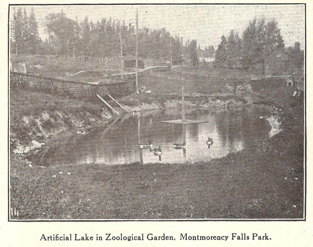 Un lac artificiel pour les oiseaux aquatiques, au zoo Holt Renfrew. Ce lac est comblé depuis longtemps.