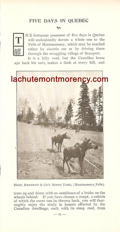 Chute Montmorency : enclos des orignaux au zoo Holt Renfrew dans une brochure de la compagnie vers 1900.