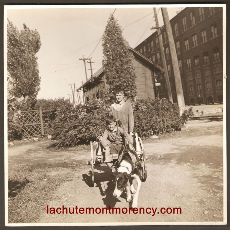 Des garçons avec une voiturette tirée par un chien. Il sont devant l'usine de la Dominion Textile et la gare du tramway. Des enfants avaient autrefois l'habitude d'apporter les repas à leurs proches qui travaillaient à la filature en utilisant de telles voiturettes. La photo date probablement des années 1940. Reconnaissez-vous ces garçons ?