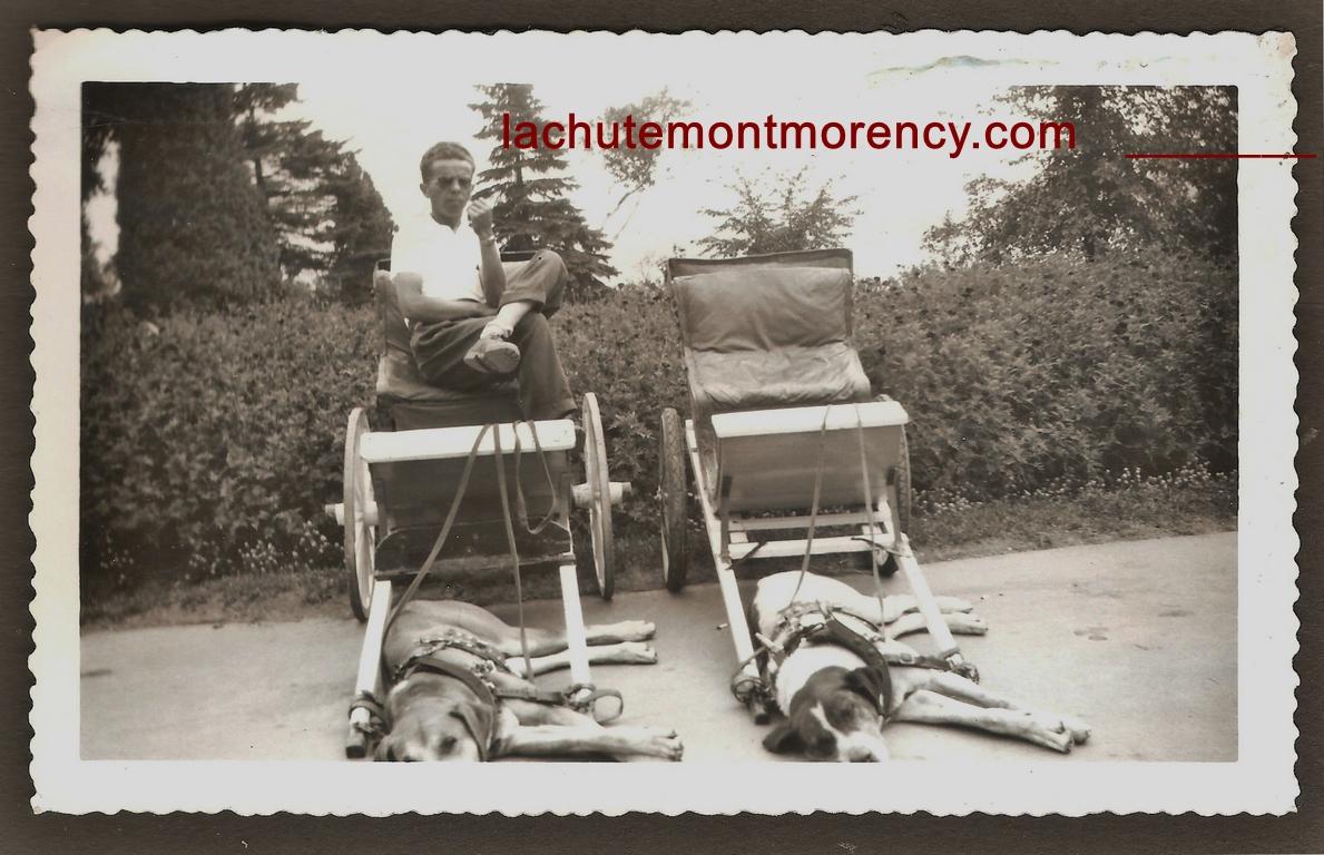 Des voiturettes sur le site de la chute Montmorency, au moment de la pause... Le conducteur est M. Marc-Édouard Beaudoin.